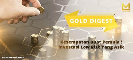 Kesempatan Buat Pemula ! Investasi Low Risk Yang Asik